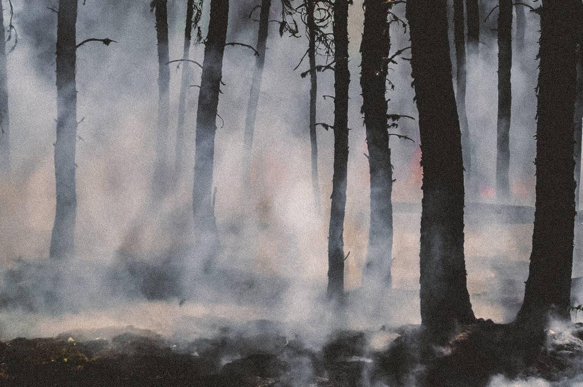 Martin doet onderzoek naar branden Indonesië: 'De waardes die we meten zijn extreem'